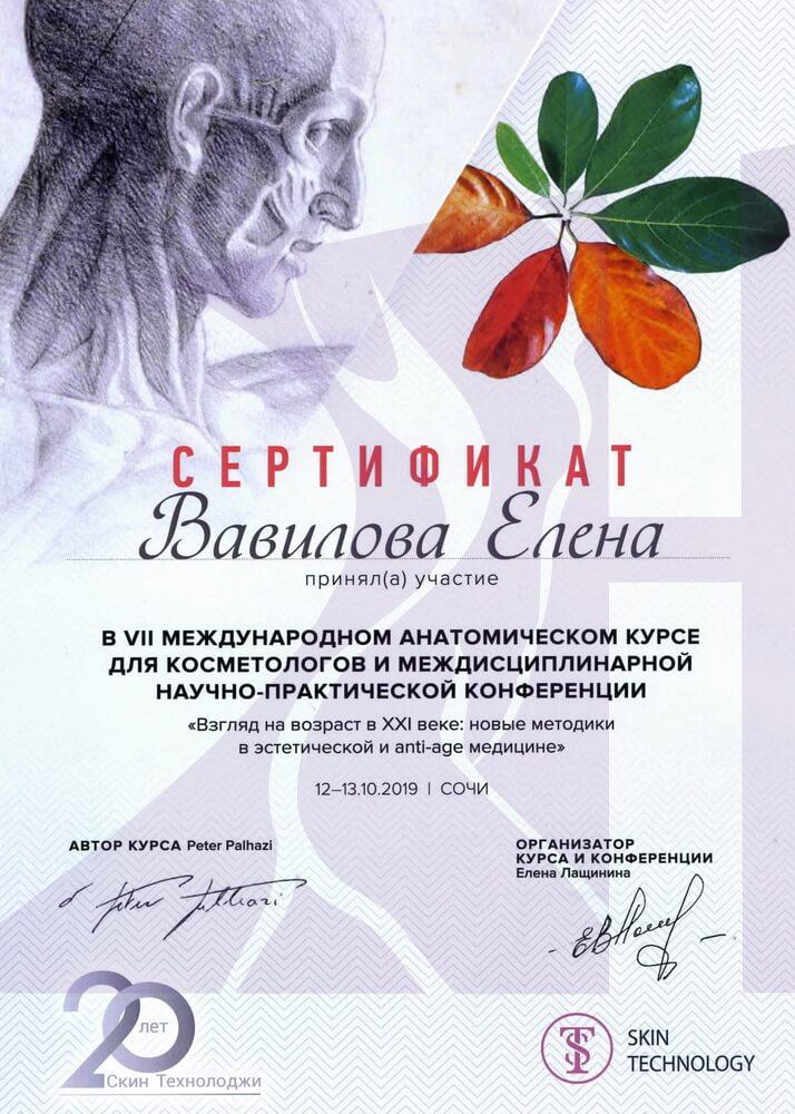 Дипломы и сертификаты (Вавилова)